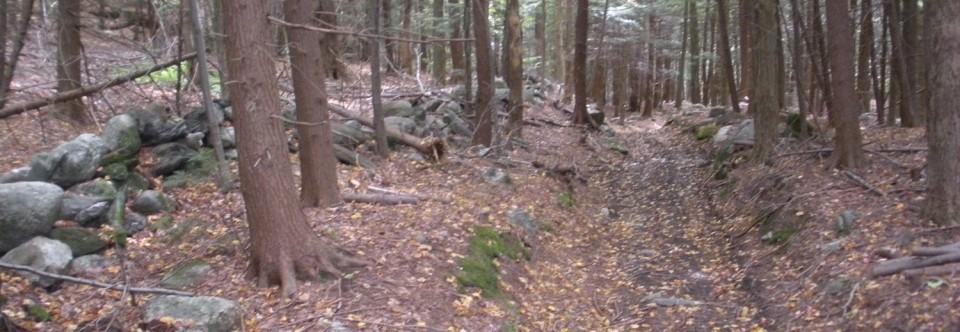 Cover Reveal in One Week: Road to Deer Run
