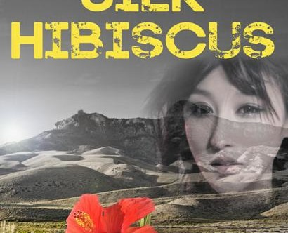 Author Alice Wisler Interview and Review: Under the Silk Hibiscus